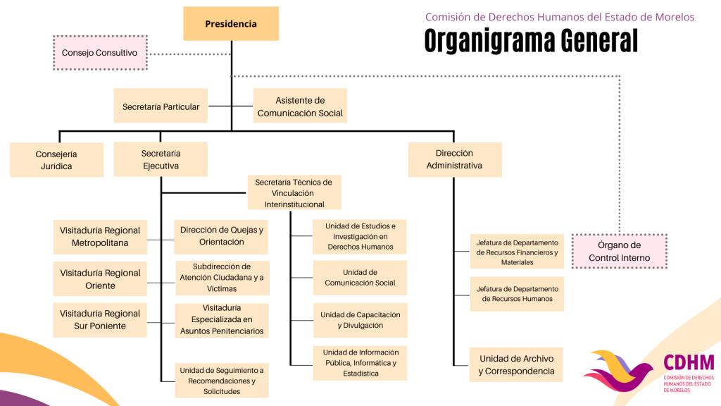 Organigrama CDH Morelos